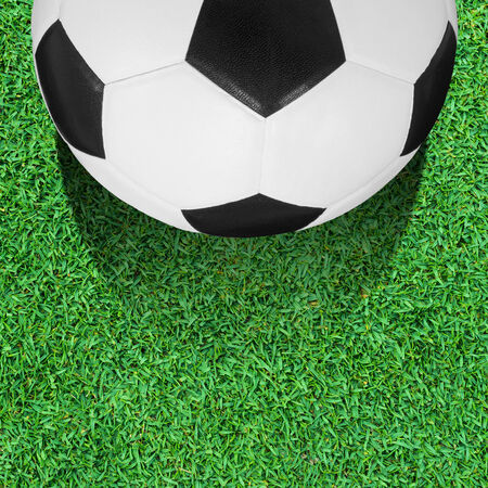 ballsport: soccer ball on the green grass field