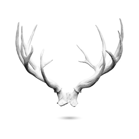 Antler replicas, made of cement, isolated on white
