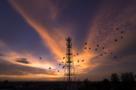 Silhouettes telecommunication tower at sunset. Beautiful sky with birds flying photo