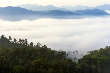 kaeng: The sea of fog in the Central Valley Kaeng Krachan National Park, Phetchaburi, Thailand. Stock Photo