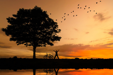evening sky: Silhouette of trees, people and bicycles and birds flying, stunning evening sky.