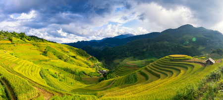 Rice fields on terraced of Mu Cang Chai, YenBai, Vietnam. Rice fields prepare the harvest at Northwest Vietnam. Stock Photo