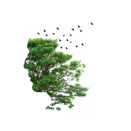 Double exposure illustration, man silhouette with tree. Imagens