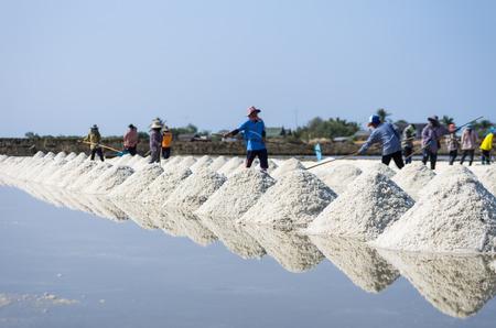 The mass of salt farm salt, sea salt. Workers ranking in the salt field in Thailand.
