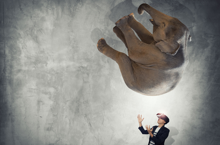 to contemplate: Concept of think big, Young men wearing virtual reality goggles and elephant fall. Stock Photo