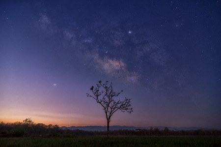 Milky way galaxy with stars and space dust in the universe on night sky over tree mae moh lumpang.