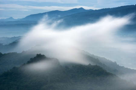 Beautiful fog over green forest on mountain, Aerial view sunrise over the mountain range at the north of thailand, Beauty rainforest landscape with fog in morning.