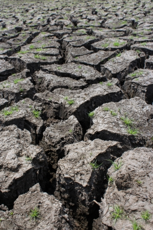 Dry soil Stock Photo - 19165639