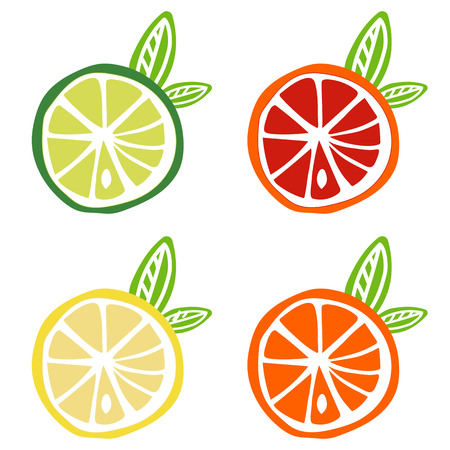 yellow lemon green lime orange red grapefruit icon fruit citrus tropical summer vector.