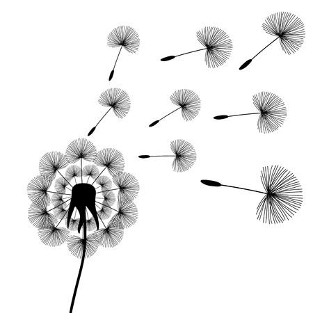 black dandelion seeds wind summer flying fluffy illustration vector. Vettoriali