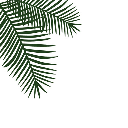 two green palm leaves on the side background vector.