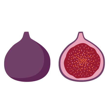 purple fig fruit sweet summer on a white background icon illustration vector.