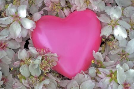 Valentine Love, sweet pink heart in a bed of flowers