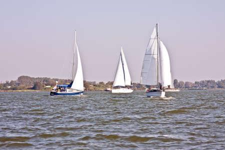 ijsselmeer: Sailing on the IJsselmeer in the Netherlands on a beautiful sunny day