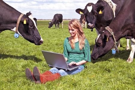 Jonge mooie vrouw met haar laptop tussen de koeien