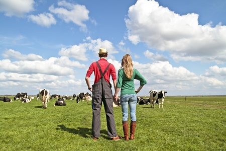 The farmer and his wife proudly looking at their cows in the countryside from the Netherlands