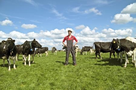Junge dutch Bauer mit seinen Kühen auf dem Lande Standard-Bild - 13773414