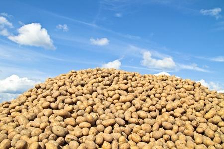 Stapel van aardappelen tegen een blauwe hemel