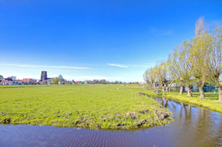 Typical dutch landscape in springtime in the Netherlands photo