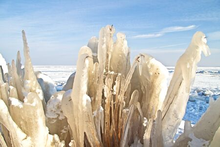 Ice flowers in the IJsselmeer in winter in the Netherlands photo