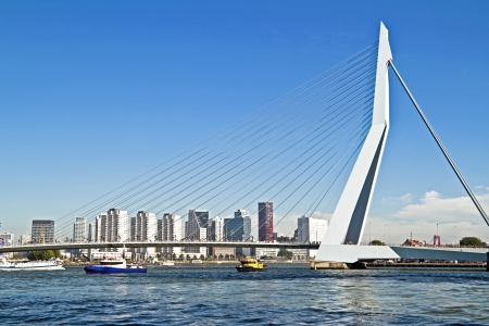 maas: Erasmus bridge in Rotterdam harbor the Netherlands