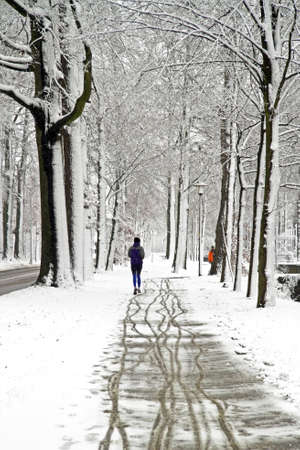 People jogging in winter in the forest from the Netherlands photo