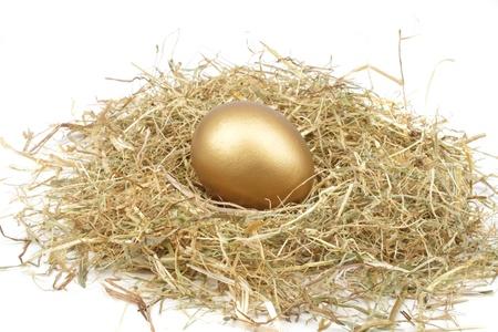 Gouden ei in het stro