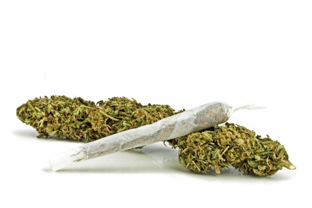 Marihuana on a white background
