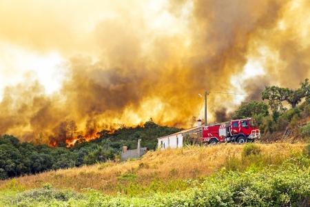 camion de bomberos: Incendio forestal enorme amenaza viviendas en Portugal Editorial