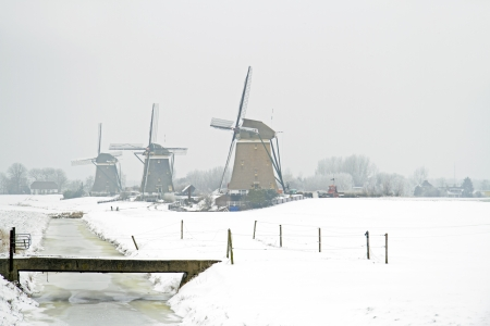 Traditonal windmills in the countryside from the Netherlands Stock Photo - 21076541
