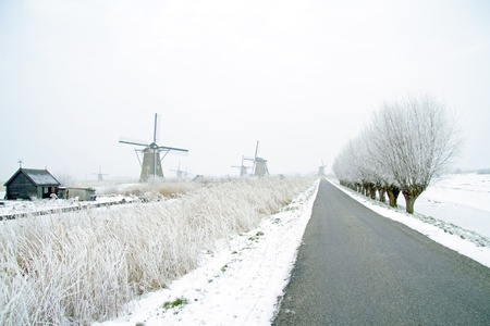 Traditonal windmills in the countryside from the Netherlands Stock Photo - 21076542