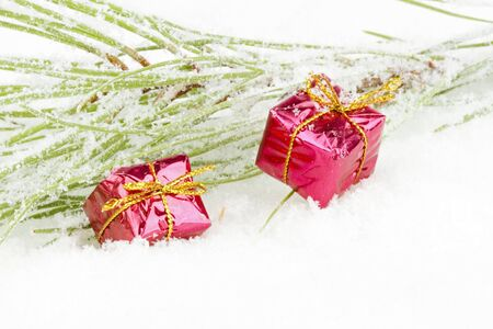 Christmas decoration with fir in the snow Stock Photo - 21490892