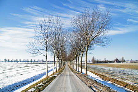 overflakkee: Winterlandscape in the countryside from the Netherlands