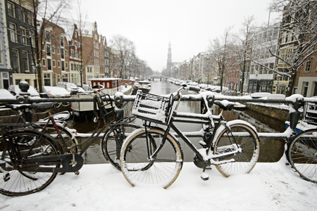 westerkerk: Amsterdam covered with snow with the Westerkerk in winter in the Netherlands