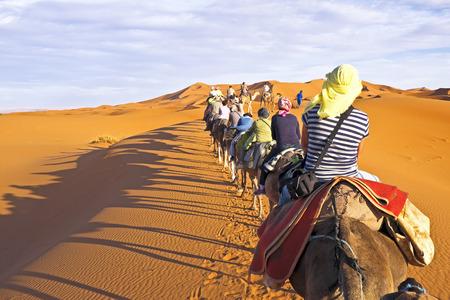 Camel caravan gaan door de zandduinen in de Sahara, Marokko. Stockfoto