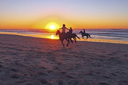 日没時、ビーチでの乗馬 写真素材