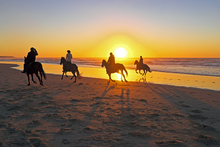 caballo de mar: Paseos a caballo en la playa al atardecer Foto de archivo