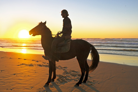 Horse riding on the beach at sunset photo