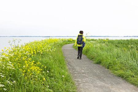 ijsselmeer: Walking along the IJsselmeer in the Netherlands in springtime
