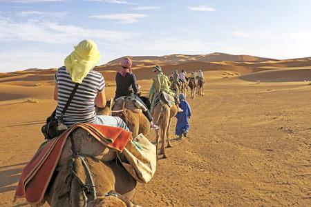 Kameel caravan gaan door de zandduinen in de Sahara Stockfoto
