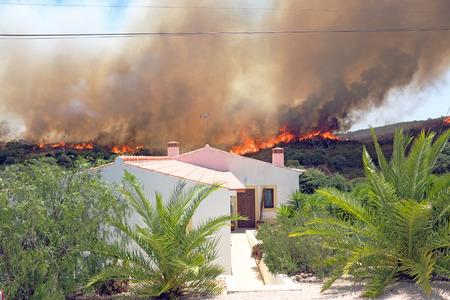 forest fire: Enorme incendio forestal amenaza viviendas en Portugal