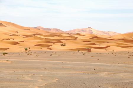 erg chebbi: Erg Chebbi desert in Morocco Africa