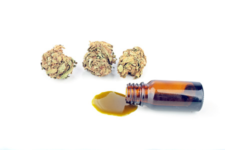 cannabis leaf: Medical Cannabis ( Marijuana ) oil ready for consumption