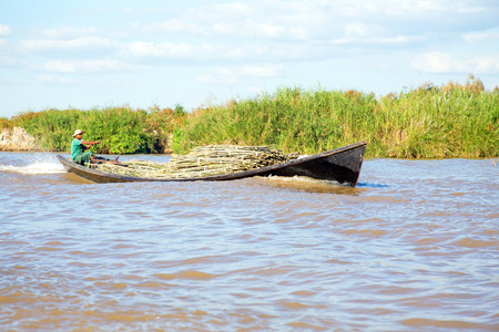 60 65: INLE LAKE, MYANMAR - November 23, 2015: Worker is transporting bamboo. Agriculture in Myanmar is the main industry in the country, accounting for 60 percent of the GDP and employing some 65 percent of the labour force.