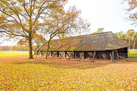 veluwe: Dutch typical sheep fold in the countryside from the Netherlands Stock Photo