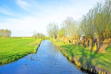 the netherlands: Spring in the countryside from the Netherlands