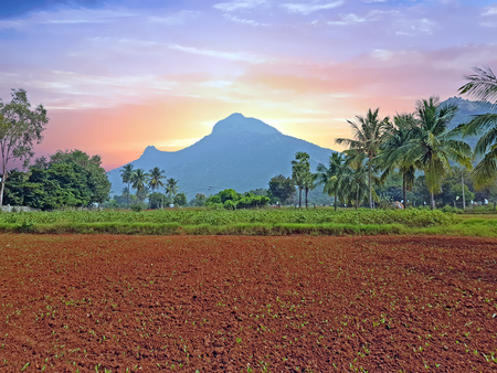 The holy mountain Arunachala in Tiruvanamalai Tamil Nadu India at sunset Standard-Bild - 123552693