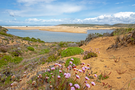 View from Carapateira beach in the Algarve Portugal Stockfoto