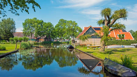 Typical dutch summer landscape in the countryside from the Netherlands