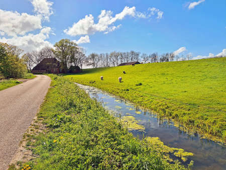 Spring in the countryside from the Netherlands